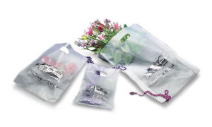 Personalized Frosted Merchandise Bag