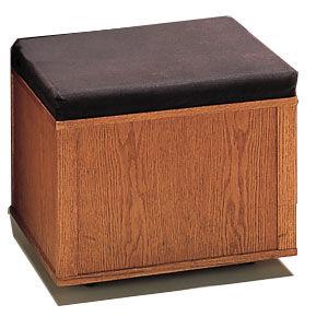 Showcase Bench