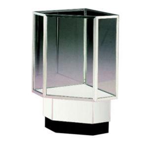 Corner Fill Display Cases